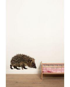 Muursticker dieren Forest Friends Hedgehog XL egel