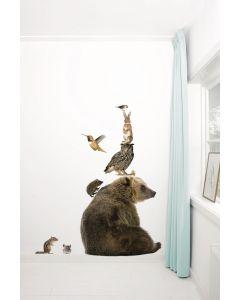 Muursticker dieren Forest Friends Set Bear XL beer