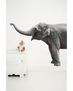 Muursticker Safari Friends olifant Elephant XL