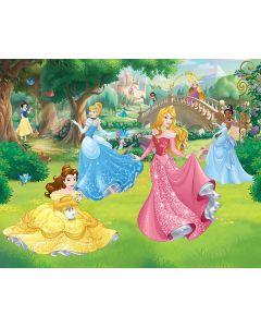 Posterbehang Disney Prinsessen Walltastic XXL
